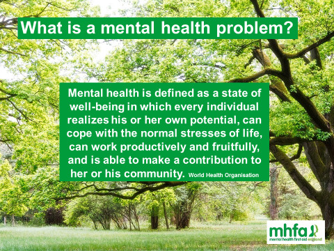 What is mental health page